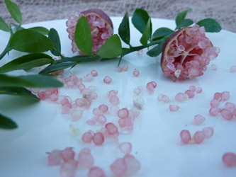 Citron-caviar-roseraie-vessieres-07