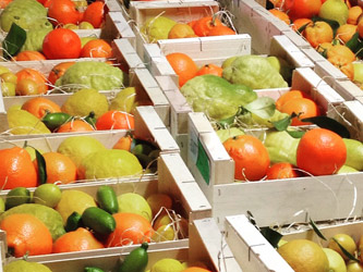 nos-fruits-roseraie-vessieres-05